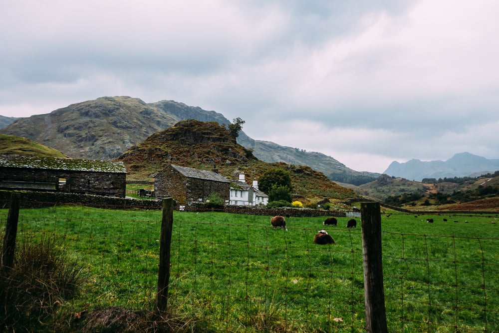 A farmhouse just outside Little Langdale